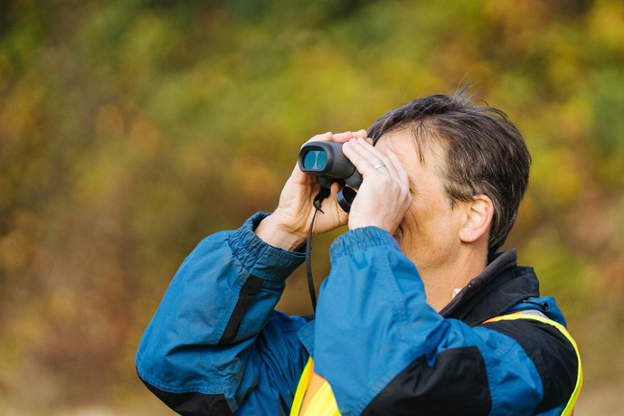 A man holding binoculars performs fieldwork by conducting a visual assessment of the surrounding wildlife species and habitat.